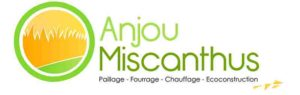 Anjou Miscanthus